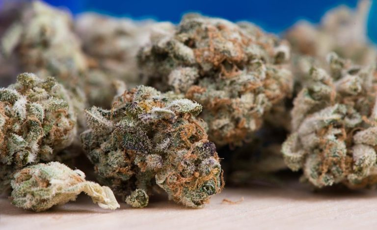 Czym najlepiej zidentyfikujemy narkotyki i materiały wybuchowe?