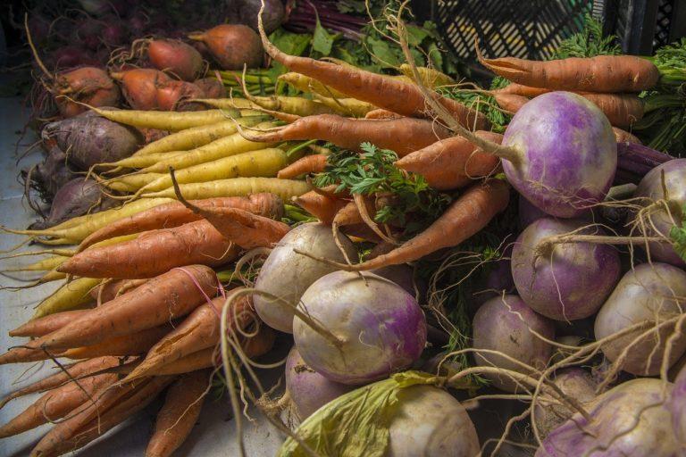 Porady i aktualności dla rolników on-line